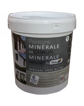 Pot contenant la peinture minérale à la Chaux 10 kg