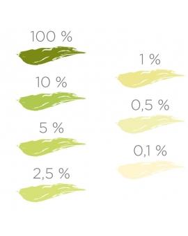 Nuancier du colorant ColorPlus vert anis 2046.